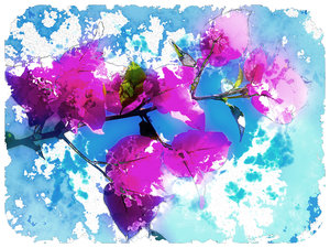 Springtime - Watercolour 2: A watercolour effect on a photo I took of a bouganvillea. Here is a link to an alternative: http://www.rgbstock.com/photo/mC2QC3O/Springtime+-+Watercolour
