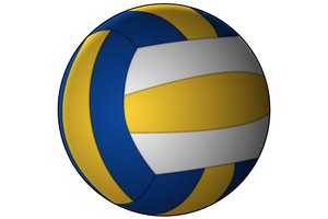 Vector Volleyball: Volleyball on a white background