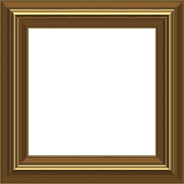 Gold Frame: A classic gold coloured picture frame.