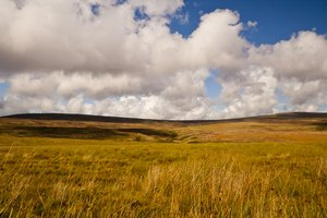 Bowland Fells 3: Some views of the Trough of Bowland, near Garstang, UK.