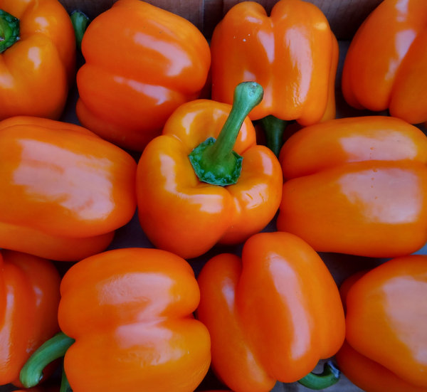 fresh orange capsicums1: bulk quantity of fresh orange capsicums