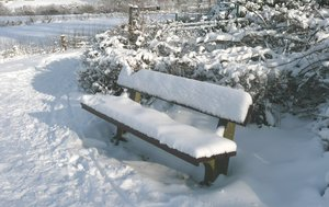 Snow covered bench: Snow covered bench beside a walk