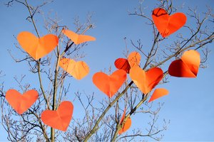 Hearts in a tree: Lots of hearts in a tree blowing in the wind