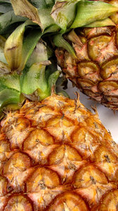 fresh pineapple2