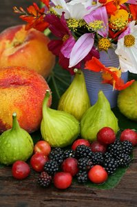 Summer Harvest: Still life summer harvest, figs, peaches, blackberries and cherry-plums.