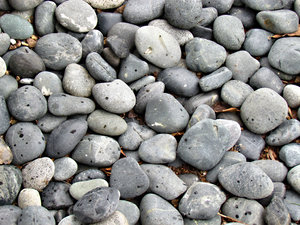 rain drops on pebbles