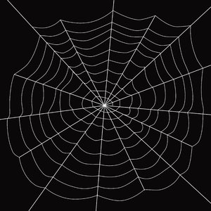 Spider's Web: White web over black.