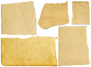 Paper Scraps: A set of torn paper scraps.