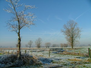 comphot04: Winter in Vlaanderen