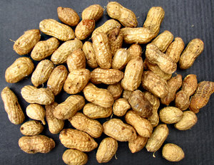 unshelled peanuts4: fresh raw peanuts in their shells