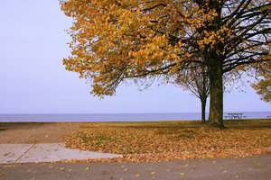 Autumn lake wallpaper: A nice autumn setting at the Ontario lake, close to Toronto Canada.