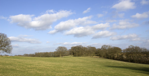 Early spring landscape: Landscape in West Sussex, England, in early March.