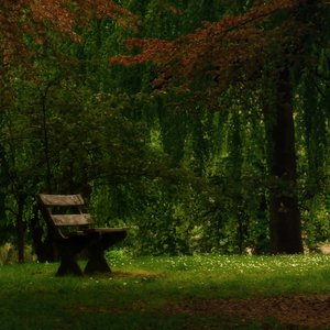 Bench: A place to think about ....
