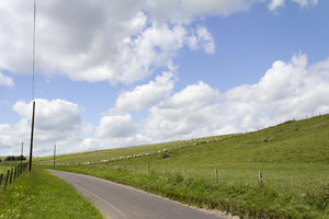 Rural road in summer: A rural road in Wiltshire, England, in summer.