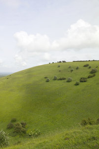 Green hill: Landscape of the chalk hills of the South Downs, East Sussex, England, in early summer.