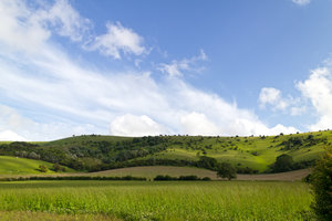 Green hills: Landscape of the South Downs, Sussex, England, in early summer.