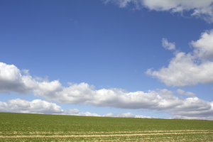 Clouds and fields: Landscape of the South Downs, West Sussex, England, in spring.