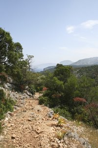 Rough hiking trail: A rough trail through rocky forest on Sardinia.