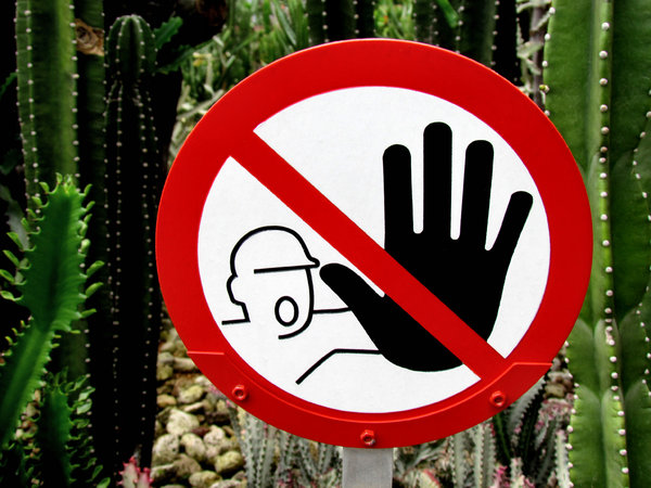don't touch1: cactus garden warning sign