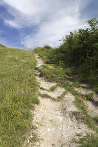 Footpath: Part of a long-distance footpath on the chalky hills of the South Downs, West Sussex, England.