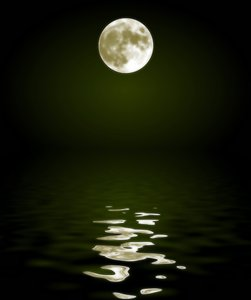 Moon Reflected in Water 3
