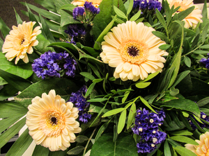gerbera bouquet 2: gerbera bouquet 2