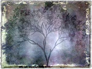 Grunge Tree 2: A grungy silhouette of a tree against a crazed background. Made from a public domain image.