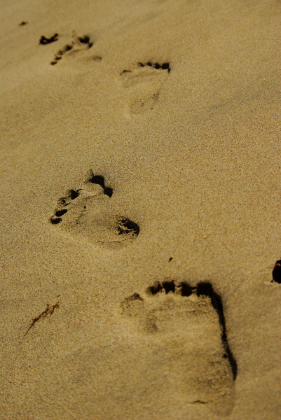 Follow my steps 1: Footsteps on the beach