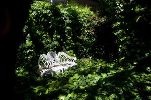 Love seat in the secret garden: The ultimate secret garden. Secluded, private and perhaps romantic