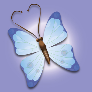 Butterfly Purple/blue