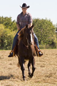Equitation - Western Riding