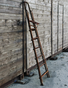 ladder rungs