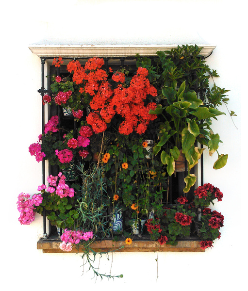 Isolated balcony, Granada: A typical Spanish village balcony, plenty of flowers. Isolated to fit on white backgrounds.