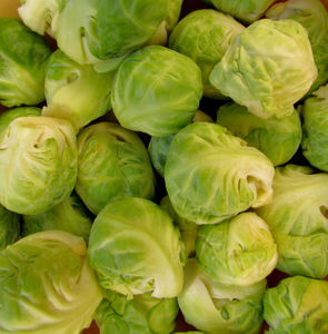 Brussels sprouts3