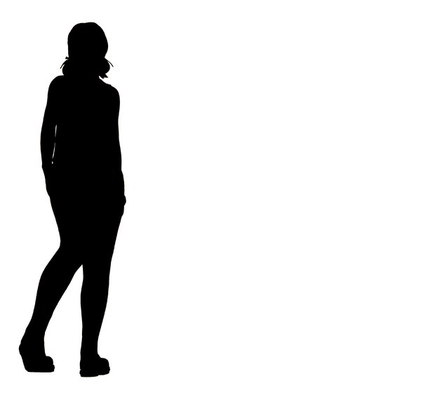 Woman's Silhouette 3: A silhouette of a standing female.