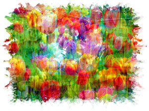 Tulip Collage: A spectacular floral collage using public domain images. The heavily edited result is copyrighted to me. You may prefer this:  http://www.rgbstock.com/photo/nVCpba2/Wildflower+Collage+3  or this:  http://www.rgbstock.com/photo/nOmx72k/Dreamy+Pastel+Backgr