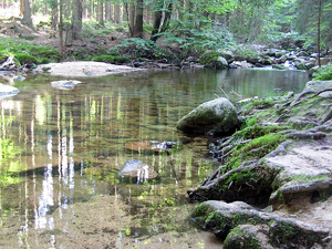 Mountain stream: A huge mountain stream Szklarka near Szklarska Poręba.