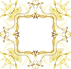 Ornate Floral Frame 1