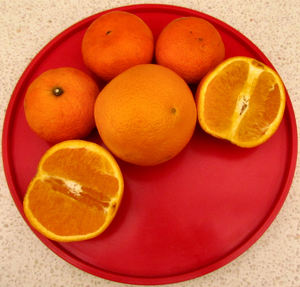 oranges & mandarins4: plate of oranges and madarin fruit