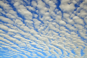 fleecy clouds: fleecy clouds