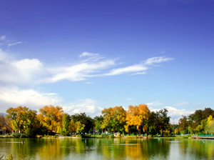 Fall Across the Pond: Fort Collins City Park Pond with Fall Foliage
