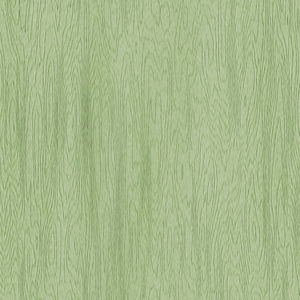Green Pastel Wood: A digitally created wood grain background in a pastel colour.