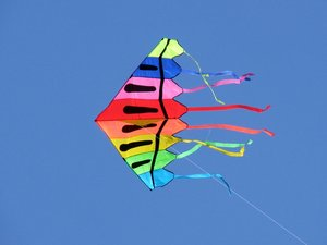 Kite: Kite flying on a summer day