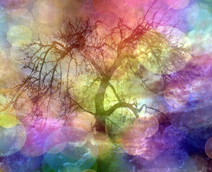 Collage Fantasy Tree 2