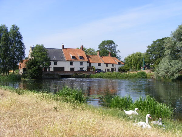 Hardwater Mill with Swan Famil