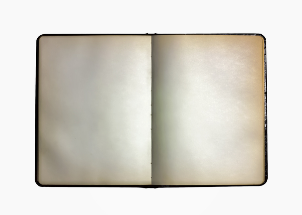Blank Pages: An open sketchbook with blank pages and gilded edges.