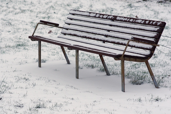 Winter bench: Bench covered in snow