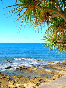 Beautiful Shore 2: A rocky coastal scene with a pandanus tree and beautiful ocean. You may prefer:  http://www.rgbstock.com/photo/2dyVve0/Paradise  or:  http://www.rgbstock.com/photo/mVES2dQ/Paradise+5