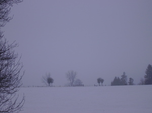 Winterscene 1: Pastures under the snow in december