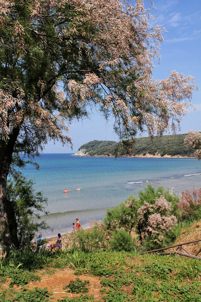Beach glimpse: a beach glimps of the Baratti's beach (Italy)